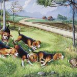 perros_cazadores-1024x768